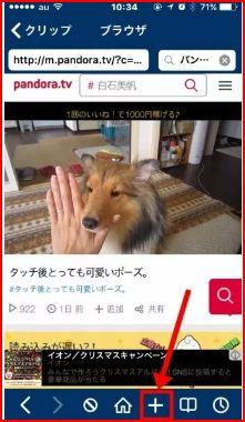 pandora 動画 ダウンロード