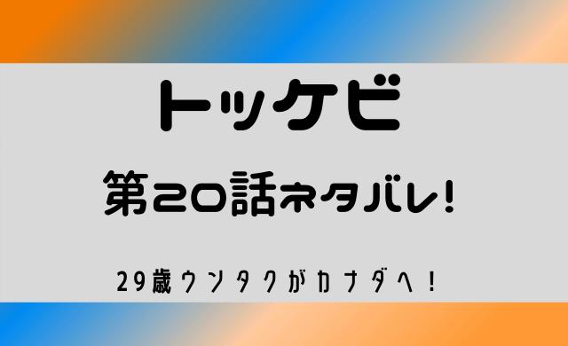 トッケビ 20話 ネタバレ