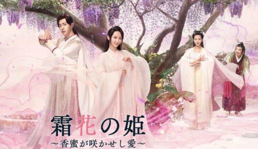 霜花の姫(中国ドラマ)動画を無料視聴する方法はこちら!