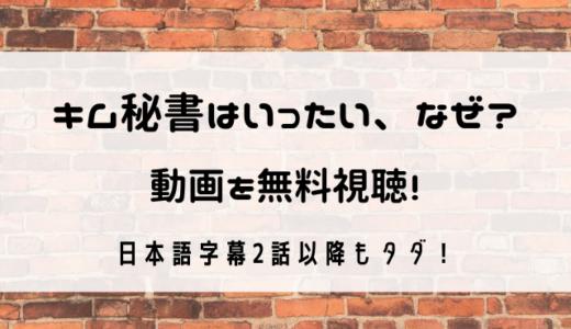 キム秘書はいったいなぜ動画を日本語字幕で無料視聴!2話以降もタダで見れるのは?