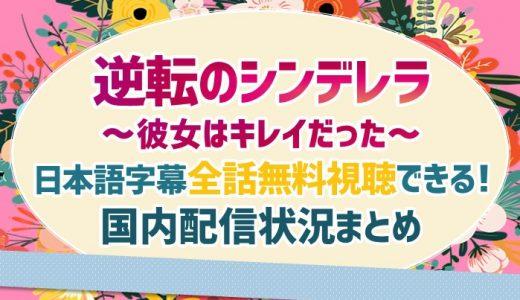 逆転のシンデレラ(中国ドラマ)動画を日本語字幕で無料視聴できる動画配信サービスまとめ